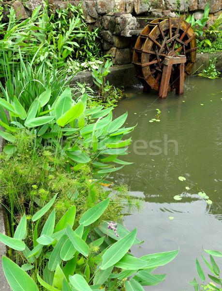 pool with water wheel Stock photo © leungchopan