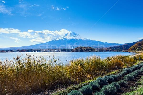 Fuji sonbahar kar dağ göl nehir Stok fotoğraf © leungchopan