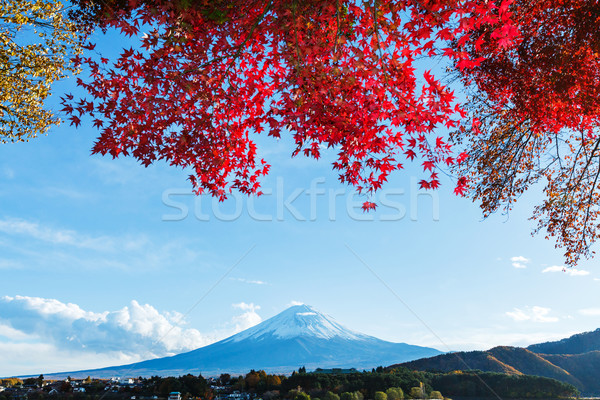 Fuji automne jardin montagne lac rivière Photo stock © leungchopan
