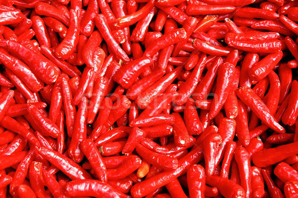 hot chili background Stock photo © leungchopan