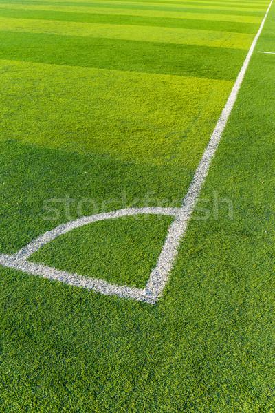 Football court Stock photo © leungchopan