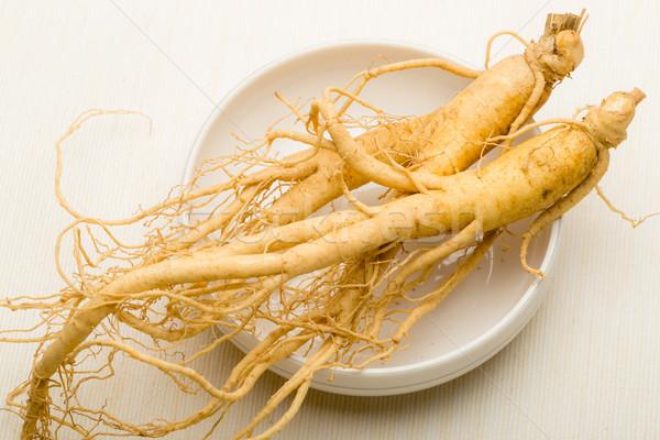 Ginseng comida branco Ásia vegetal saudável Foto stock © leungchopan