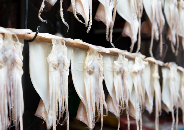 Hanging squid for dehydration Stock photo © leungchopan