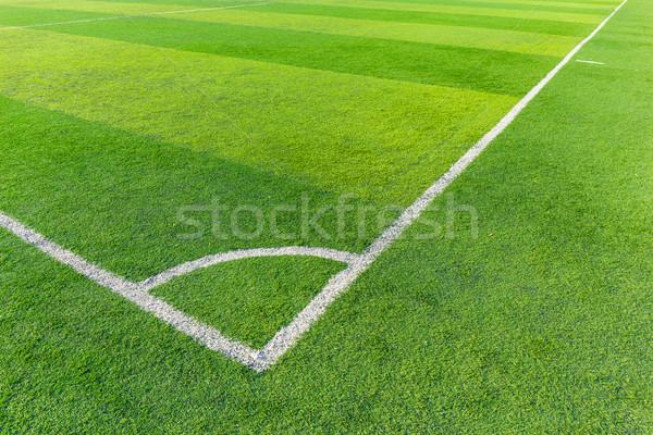 Soccer football field stadium grass line Stock photo © leungchopan