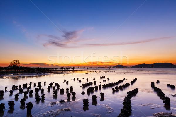 Mooie zeegezicht zonsondergang natuur landschap zonsopgang Stockfoto © leungchopan