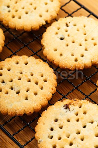 Ev yapımı kuru üzüm kurabiye zaman pişirme Stok fotoğraf © leungchopan