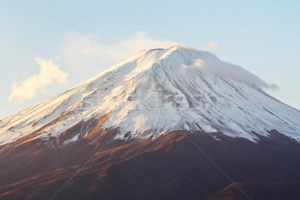 Fuji neve montanha nascer do sol outono planta Foto stock © leungchopan