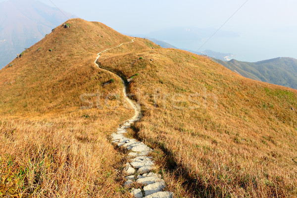 mountain path Stock photo © leungchopan