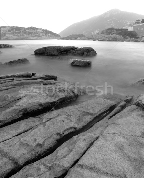 coast in black and white Stock photo © leungchopan