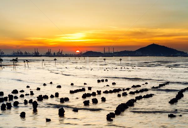 морской пейзаж закат пляж солнце пейзаж океана Сток-фото © leungchopan