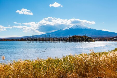 Foto stock: Fuji · lago · neve · montanha · outono · branco