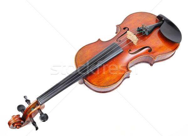 violin Stock photo © leungchopan