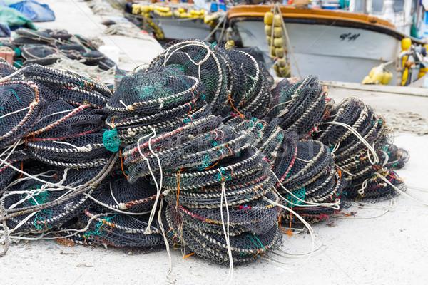Сток-фото: морепродуктов · чистой · текстуры · морем · океана · зеленый