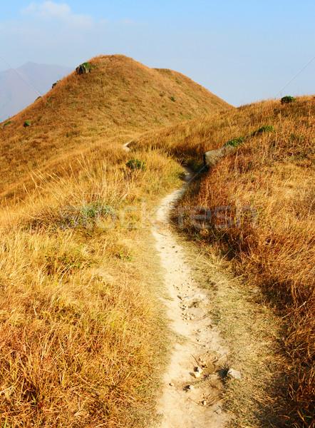 походов пути горные трава области рок Сток-фото © leungchopan