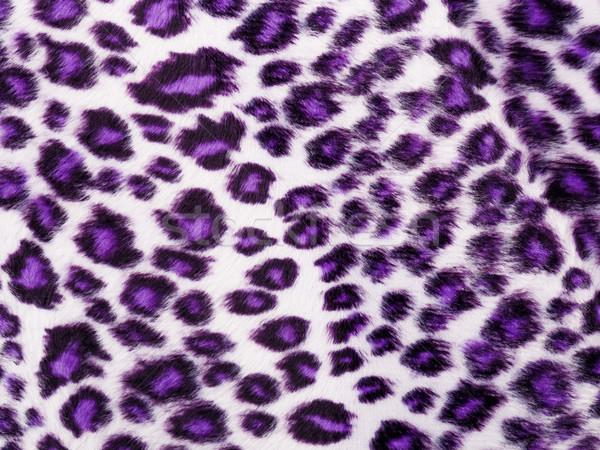 Leopard Printed in purple Stock photo © leungchopan