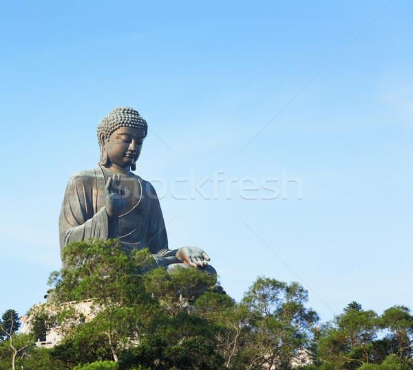 Gigante buda Hong Kong árvore adorar cultura Foto stock © leungchopan