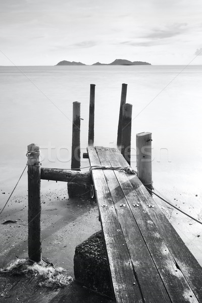 pier go into sea , black and white Stock photo © leungchopan