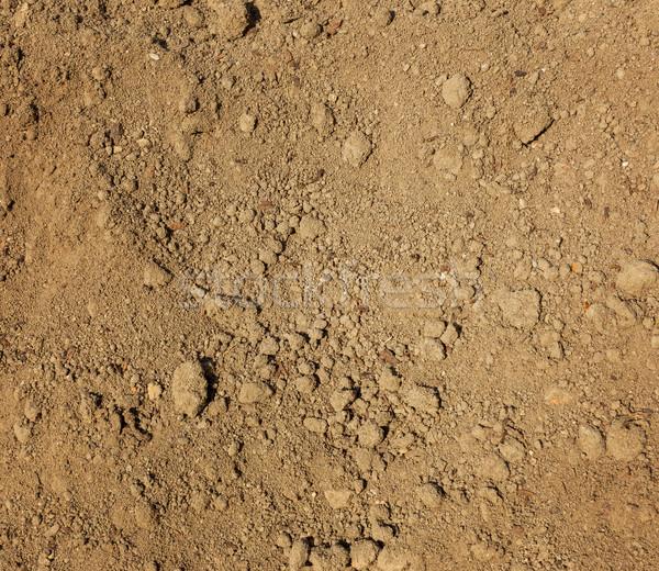 Dry agricultural brown soil  Stock photo © leungchopan