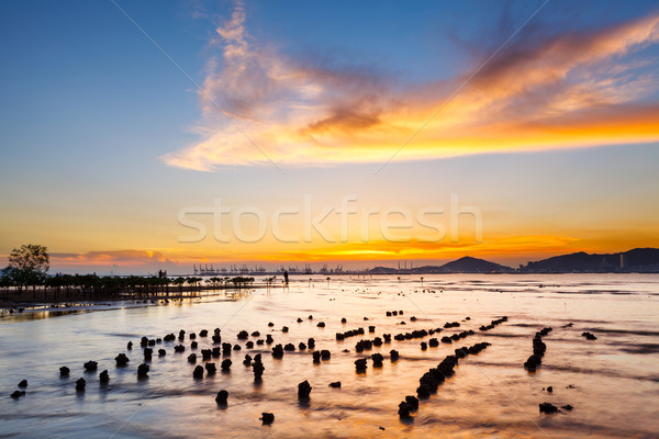 Seascape and sunset Stock photo © leungchopan