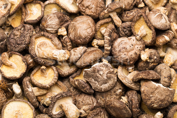 Dried shiitake Stock photo © leungchopan