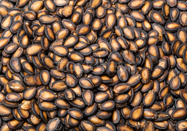 Stock photo: Watermelon seed in black