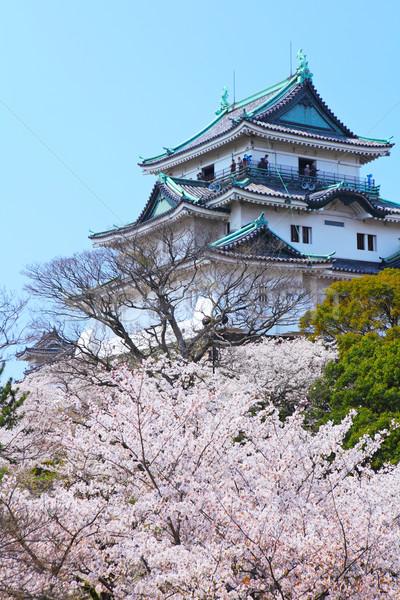 Wakayama castle with sakura Stock photo © leungchopan