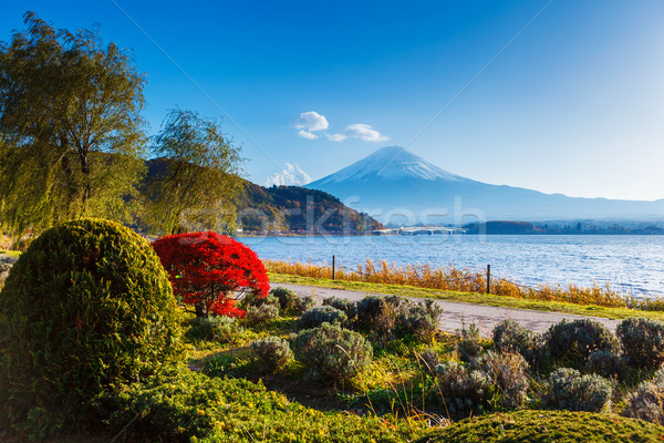 Fuji sonbahar manzara bahçe dağ göl Stok fotoğraf © leungchopan