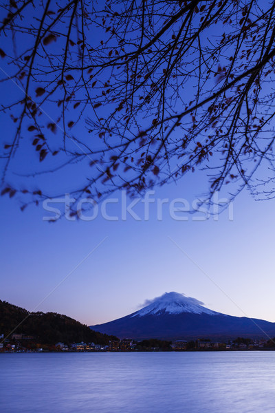 Mt. Fuji at evening  Stock photo © leungchopan