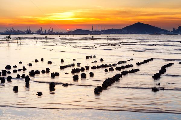 Tengeri kilátás naplemente természet tájkép napfelkelte kő Stock fotó © leungchopan