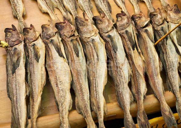 Salty fish Stock photo © leungchopan