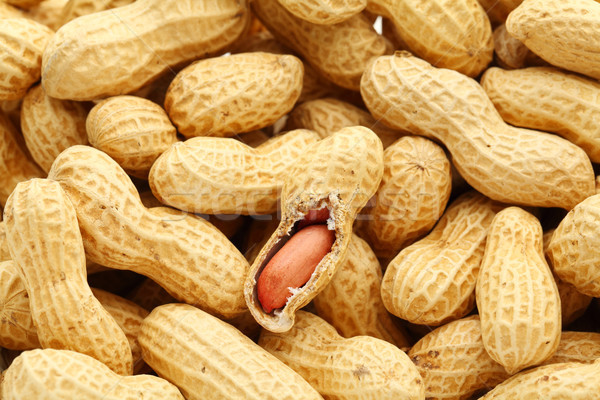 Peanut Stock photo © leungchopan
