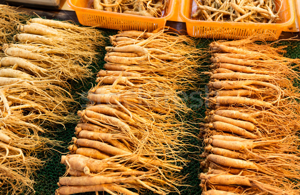 Fresh ginseng stick for sell Stock photo © leungchopan