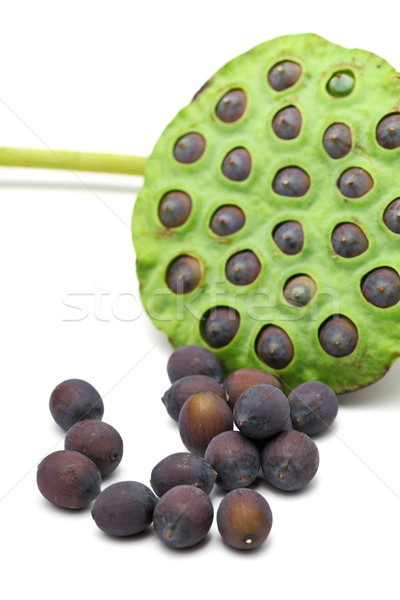 Stockfoto: Lotus · zaad · peul · geneeskunde · zwarte · plant