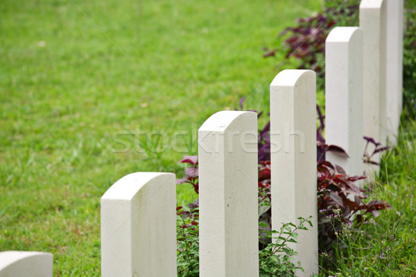 Rows of headstone at atmilitary memorial Stock photo © leungchopan