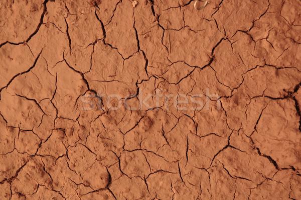 сушат землю аннотация фон пустыне лет Сток-фото © leungchopan