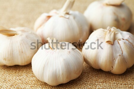чеснока фотографии Spice никто изображение Сток-фото © leungchopan