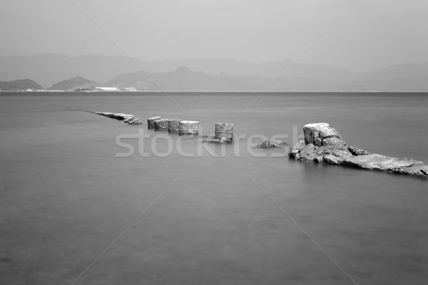 desolate and broken peer Stock photo © leungchopan