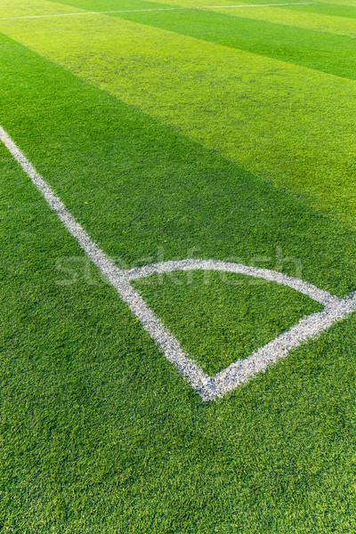 Soccer field grass with white line Stock photo © leungchopan