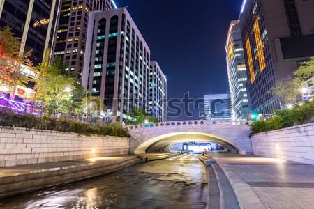 Seul cidade cachoeira Ásia cityscape fonte Foto stock © leungchopan