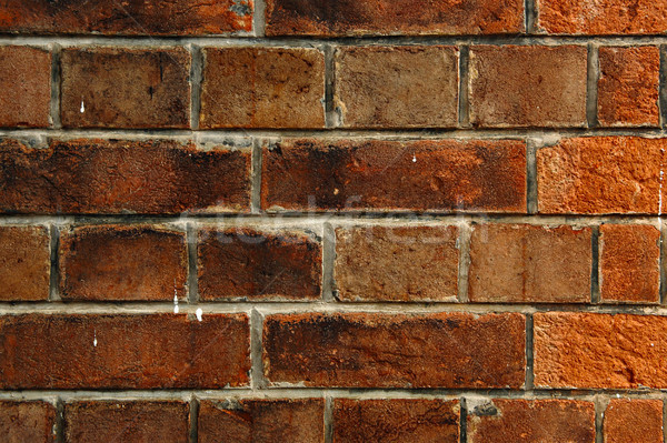 old bricks wall Stock photo © leungchopan