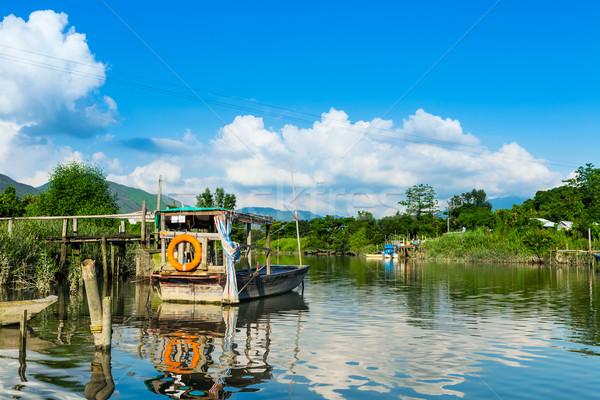 Wetland wityh sunny day Stock photo © leungchopan