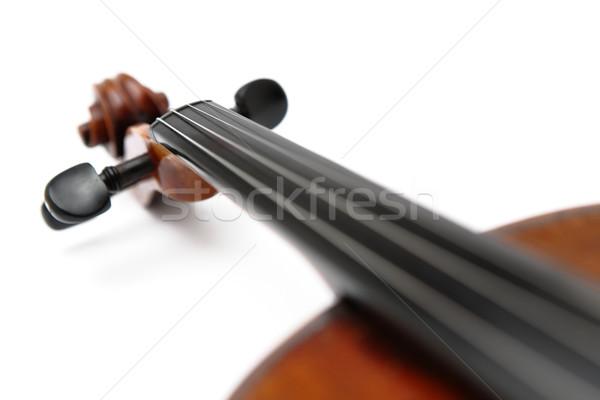 violin head Stock photo © leungchopan