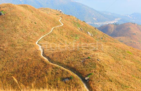 twisting mountain path Stock photo © leungchopan