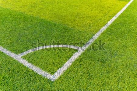 Football court grass Stock photo © leungchopan