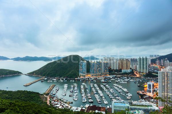 Tierheim Hongkong Himmel Büro Baum Gebäude Stock foto © leungchopan