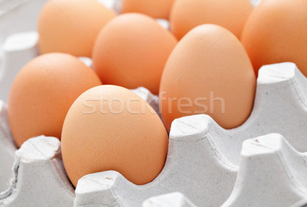 egg in box Stock photo © leungchopan