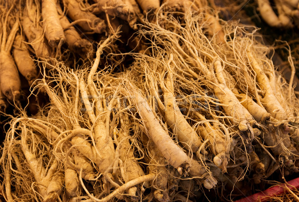 Fresh ginseng for sell Stock photo © leungchopan