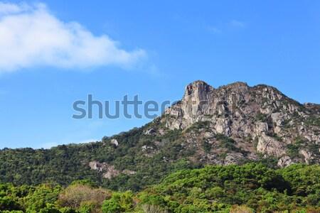 Lion Rock, symbol of Hong Kong spirit Stock photo © leungchopan