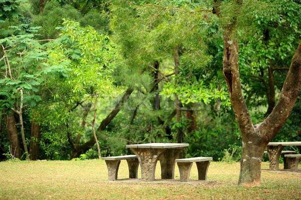Piknik yer çiçekler doğa ev bahçe Stok fotoğraf © leungchopan