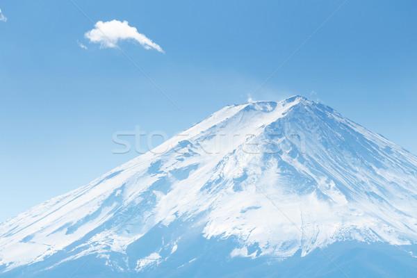 Monte Fuji paisaje nieve montana otono planta Foto stock © leungchopan